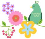 bird_s01