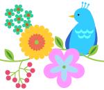 bird_s02
