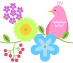 bird_s03