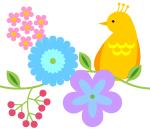 bird_s04